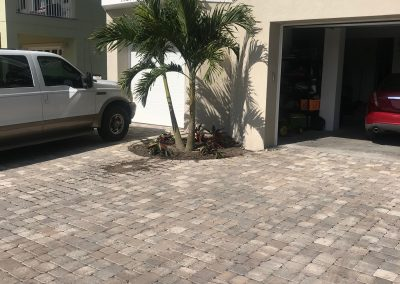 Paver and Pool Landscape Project