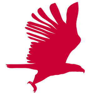 all american landscape design group logo